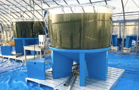 〈Area: Energy〉 Project: Algae Biomass & Energy  System|OISO