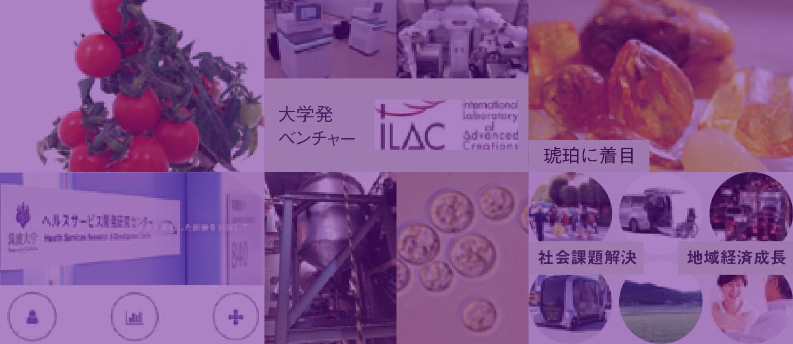 各研究分野のプロジェクト紹介 筑波大学オープンイノベーション国際戦略機構